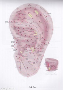 auricular acupuncture points left ear