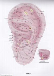 auricular acupuncture points left ear